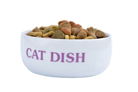 A healthy bowl of dried pet food photo