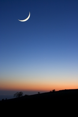 A cresent moon at sunset above silhouetted trees photo