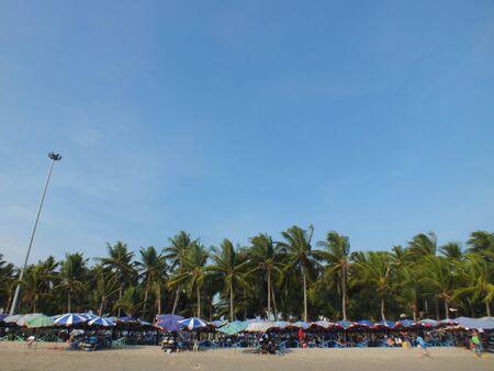 cococnut and more umbrella on the beach Stock Photo - 18595233