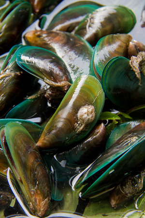Green Mussels with spices Stock Photo