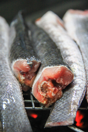 striped snakehead fish: Striped snakehead fish for grill .