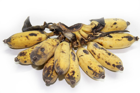 cultivated: cultivated banana from Thailand .