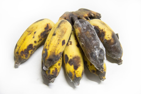cultivated banana from Thailand . photo