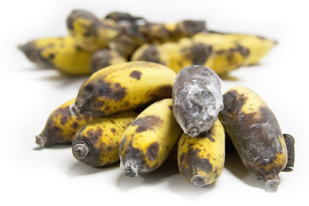 waste cultivated banana from Thailand . photo