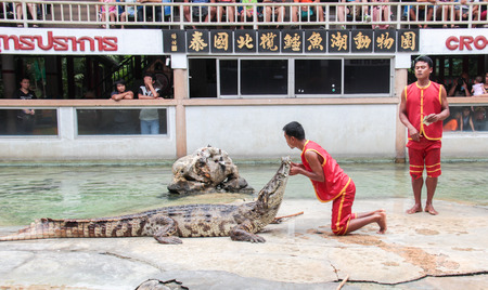 SAMUTPRAKARN,THAILAND - AUGUST 2: crocodile show at crocodile farm on AUGUST 2, 2014 in Samutprakarn,Thaila nd. This exciting