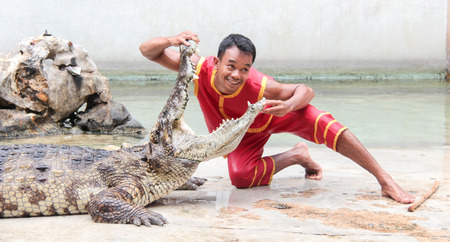 SAMUTPRAKARN,THAILAND - AUGUST 2: crocodile show at crocodile farm on AUGUST 2, 2014 in Samutprakarn,Thaila nd. This exciting