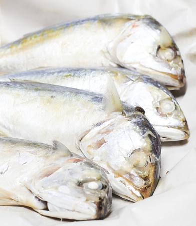 Four mackerel on the dish photo
