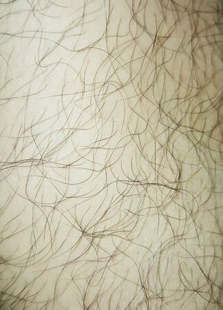 shin: Shin hair skin texture background