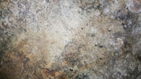unsanitary: grunge old and scratch on the cement concrete wall texture