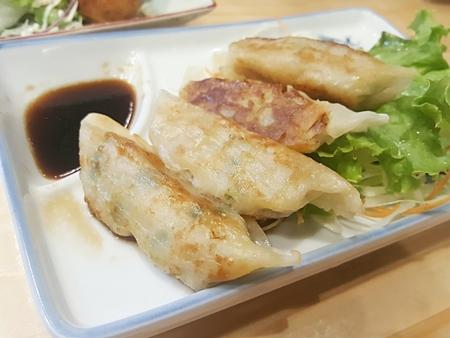 gyoza: gyoza with sauce