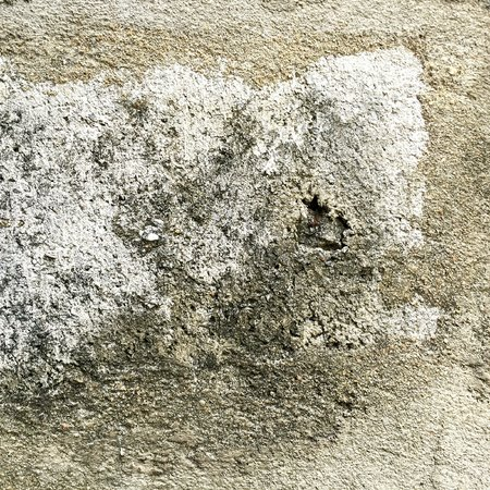 moist: Wet and moist cement floor with the lichen Stock Photo