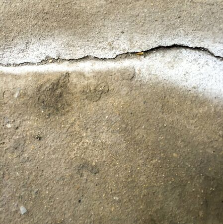 wall texture: Cracked concrete texture wall