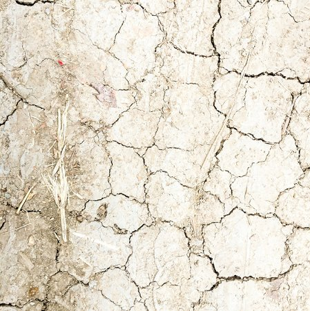 soil texture: Crack and dry soil texture