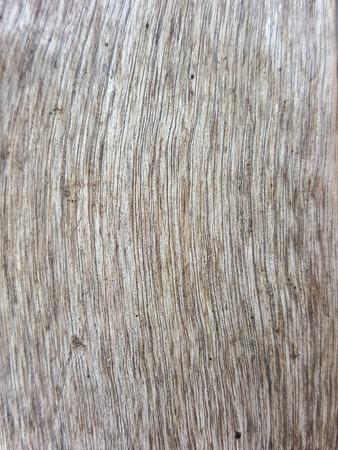 texture ': wood texture