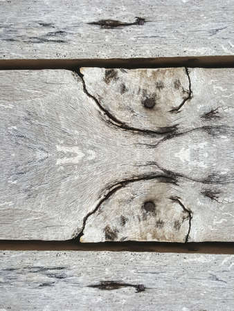 grubby: grunge wood texture background