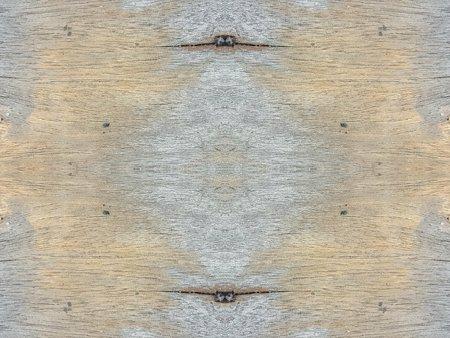 unsanitary: grunge wood texture background