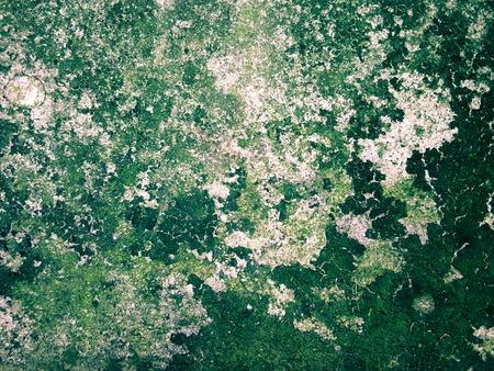 field stripped: moist wet concrete texture background