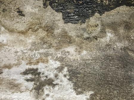 unsanitary: grunge concrete texture background Stock Photo