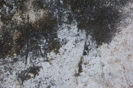 grunge moist dirty stain concrete wall texture background Stock Photo