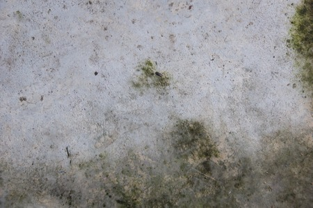 field stripped: grunge moist dirty stain concrete wall texture background Stock Photo