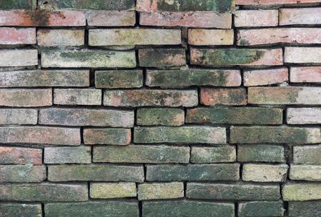 moist: Moist lichen brick wall texture Stock Photo