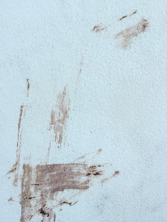 clone: grunge dry mud stain on concrete wall