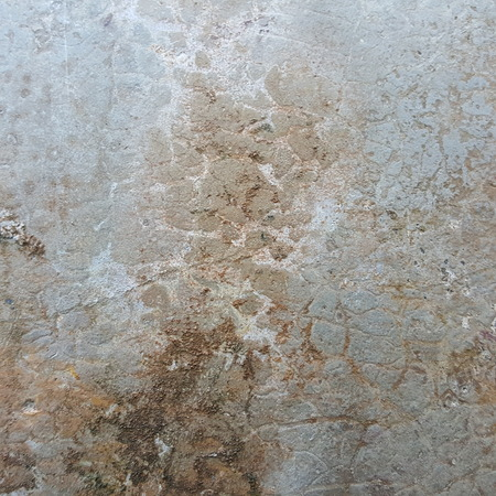 grunge moist stain old concrete wallr texture