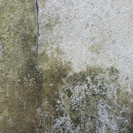 grunge moist stain old concrete wallr texture