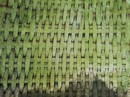 lichen on moist bamboo weave texture Stock Photo