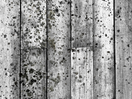 dirty spot on old wood floor texture Stock Photo
