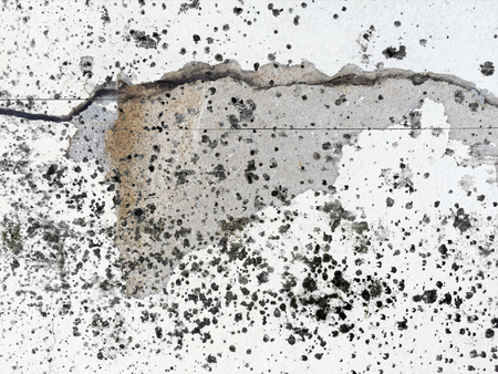 dirty black oil spot on crack concrete texture Stock Photo