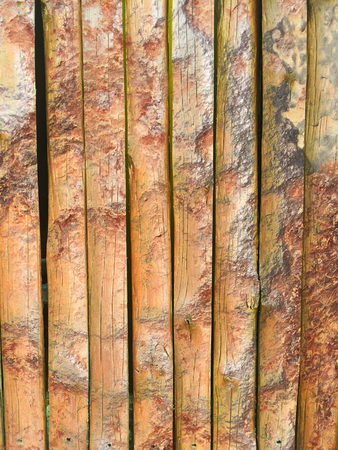 rough rusty bamboo wood texture