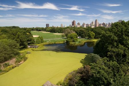 A landscape of Central Park in New York City