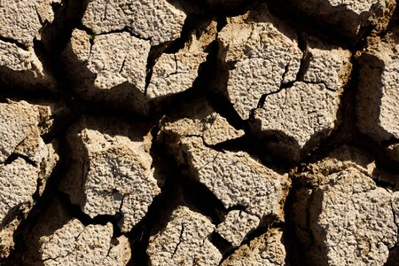 Dry earth texture Stock Photo - 8018916