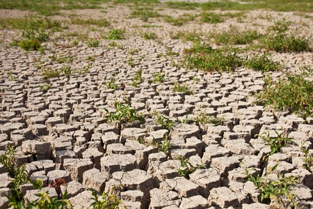 Global warming concept of cracked ground Stock Photo - 8018921
