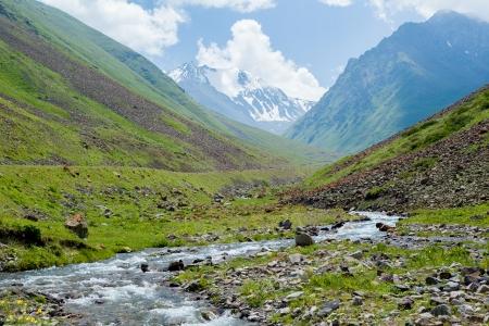 tien shan: Mountain river and white mountain peak, Tien Shan, Kyrgyzstan Stock Photo