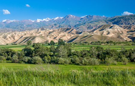 high desert: Tien Shan mountains and valley, Kyrgyzstan Stock Photo