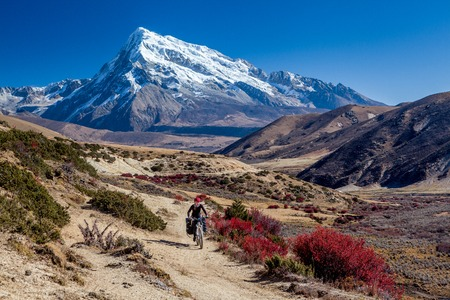 Mountain bicycle tourist with loaded bike riding single track in mountains. Tibet, China