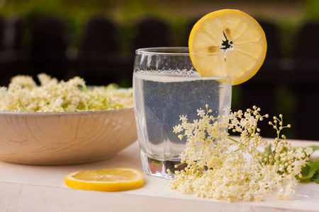 Freshly picked elderberry flowers in a beautiful ceramic bowl with lemon slices as decoration. The flowers of Sambucus species are used to produce elderflower cordial, homemade sweet syrup or juice.