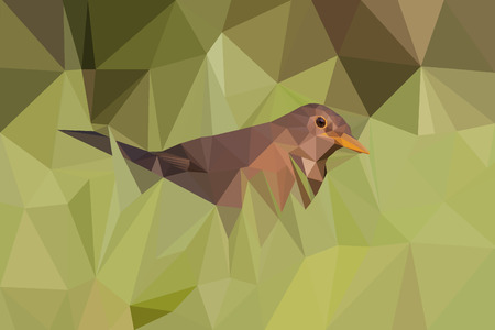 Polygonal art style, detailed brown bird female blackbird in green grass. Digital illustration, vector.