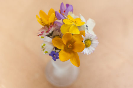 A miniature bouquet of spring harbingers. Yellow, violet and purple crous or saffron flowers, spring snowflake, daisies, pansy, primrose and blue-eyed-Mary in a small glass vase on a wooden surface. Standard-Bild