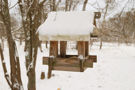 lonesome: bird feeders. tree house for the birds, cheerful apartment Stock Photo