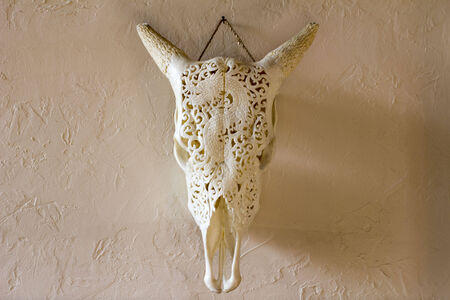 cow skull dragon carving