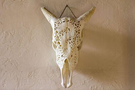 craneo de vaca: vaca drag�n tallando cr�neo