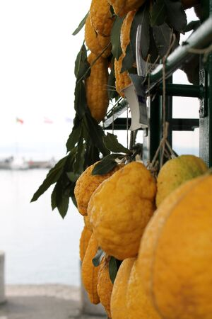 citrons: citrons Stock Photo
