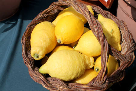 citrons: lemons Stock Photo