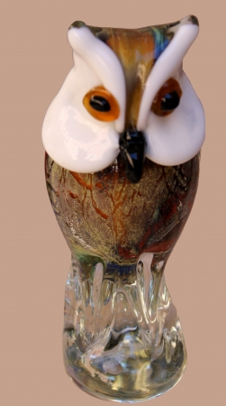 owl glass photo