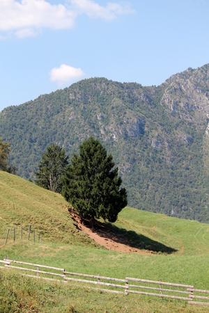 landscape mountain photo