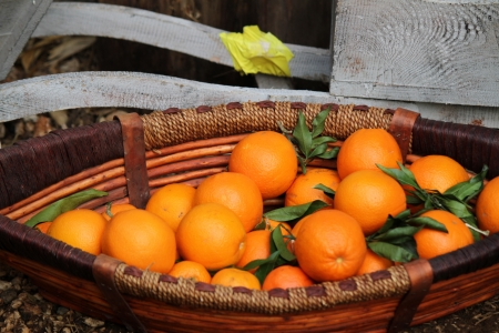 oranges in the basket photo