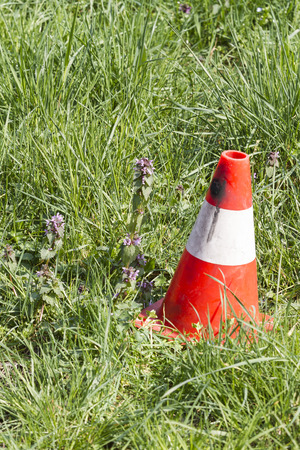 road cone in the meadow
